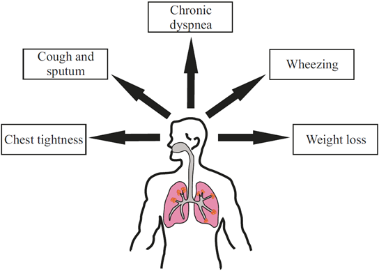 chronic obstructive pulmonary disease copd for Chronic obstructive pulmonary disease (copd) is estimated to affect 32 million persons in the united states and is the third leading cause of death in this country.